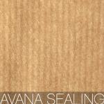 tipo di carta per le shopper personalizzate: avana sealing